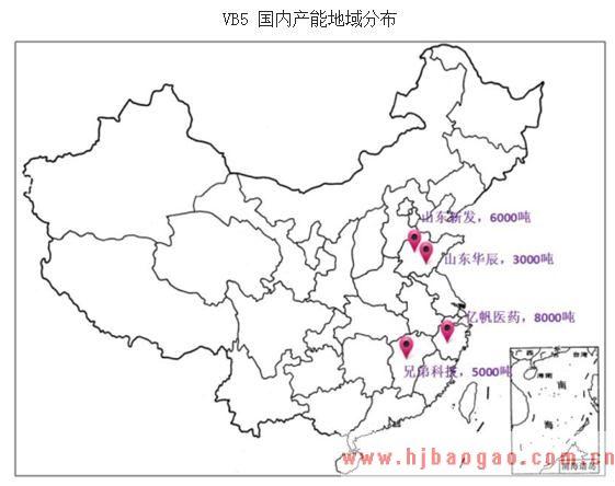 2019-2025年中国泛酸钙行业发展现状及市场前景分析预测研究报告