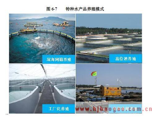 特种水产品养殖模式